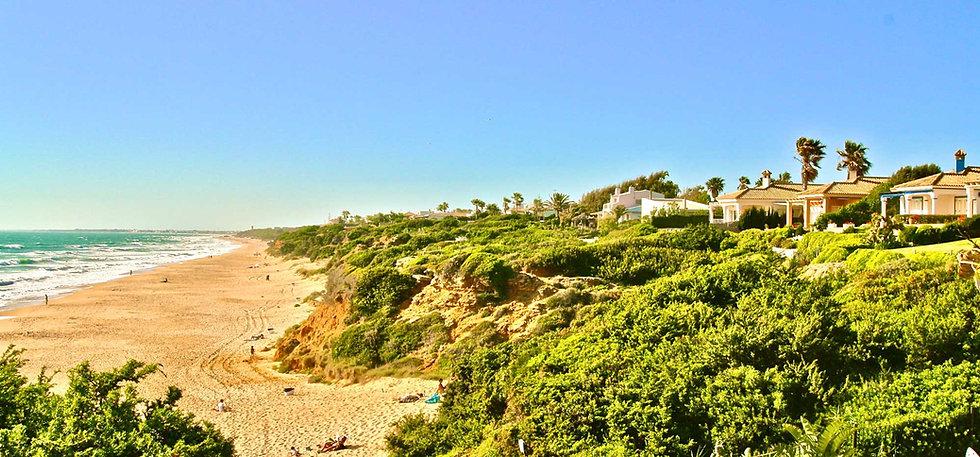 sandy-beach-nature-roche.jpg