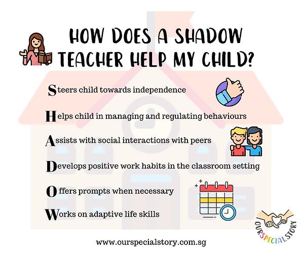 shadow teacher.png