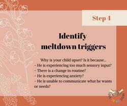 Managing meltdowns