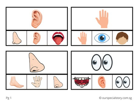 Body Parts Clip Cards!