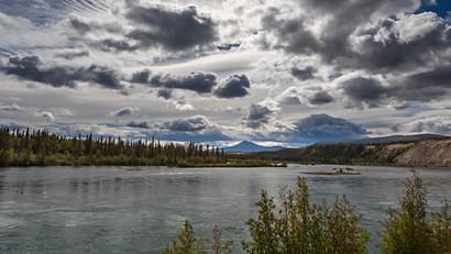 Der noch junge Yukon gleitet bei Whitehorse vorbei