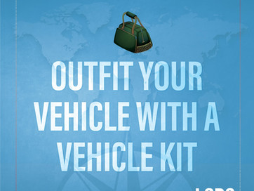 LSDS ROAD TRIP TRAVEL TIP - OUTFIT YOUR VEHICLE WITH A VEHICLE KIT