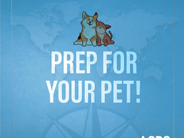 LSDS ROAD TRIP TRAVEL TIP - PREP FOR YOUR PET