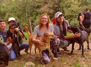 Caminata 2 perritos refugio_edited.jpg