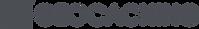 Logo_Geocaching_Horiz_NightCacheGrey.png