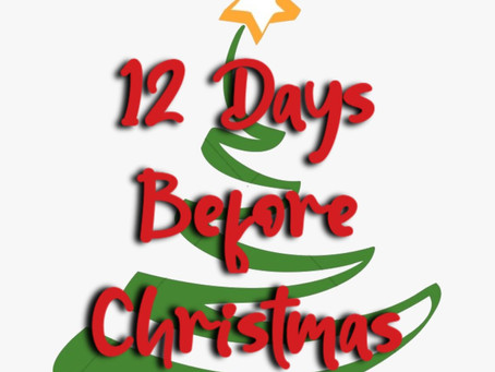 Celebrate The Holidays - 12 Days Before Christmas Fun!