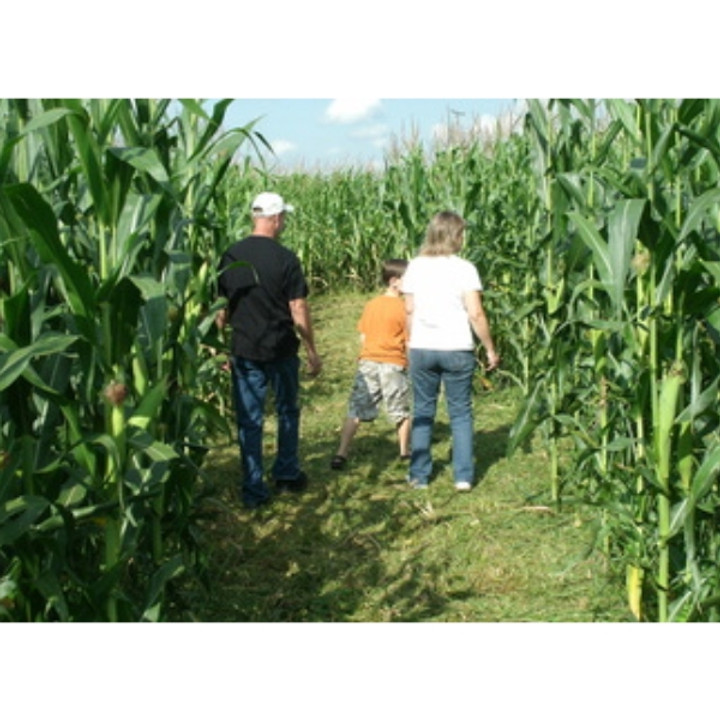 Guyette Corn Maze (9/18-10/31)