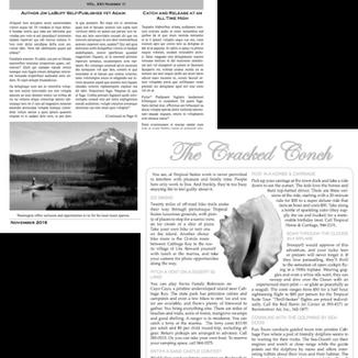 Newsletter Designing