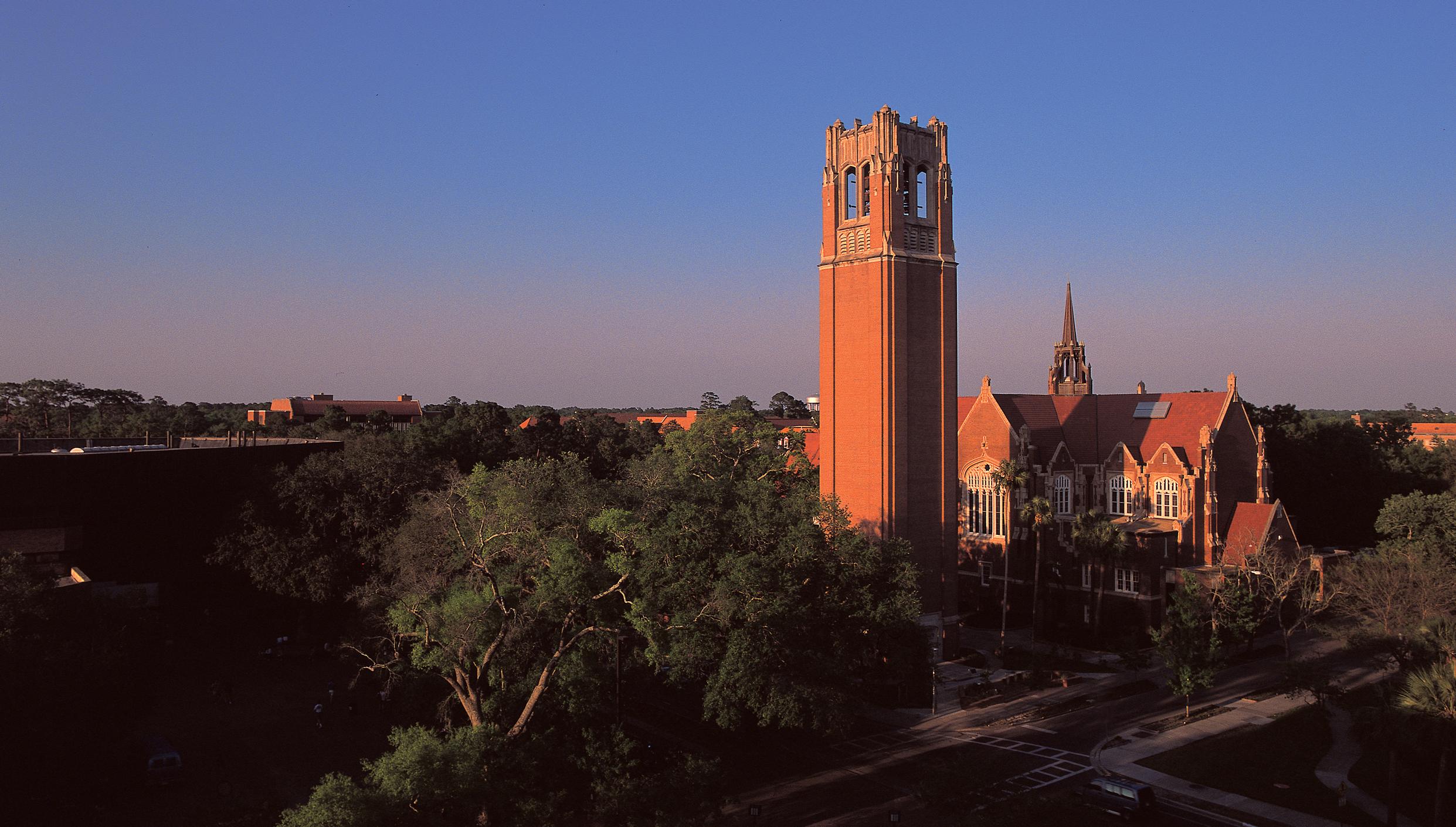 The beautiful UF campus