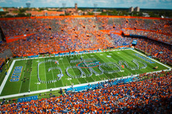 Gators Spell-Out