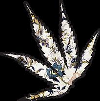 Leaf Logo w Wallpaper (1).png