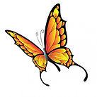 papillon-de-vol_91-6457.jpg