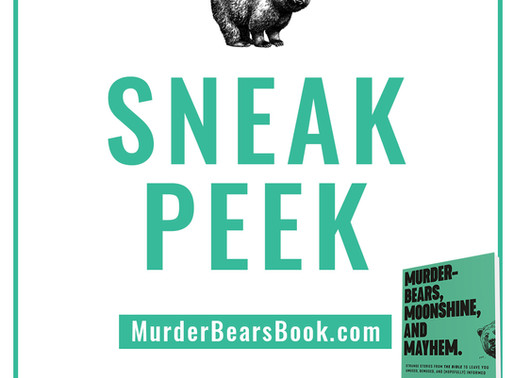 Read the first two chapters of Luke's book, 'Murder-Bears,' for free!