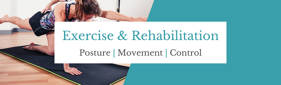 Exercise & Rehabilitation Header.png