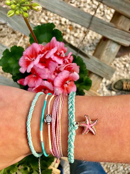 Caribbean Starfish Collection
