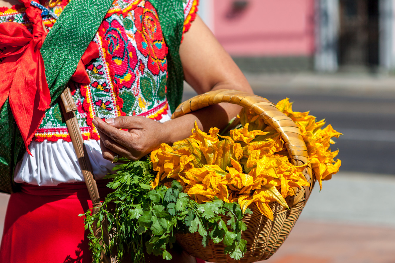 Woman in ethnic traditional Mexican dres