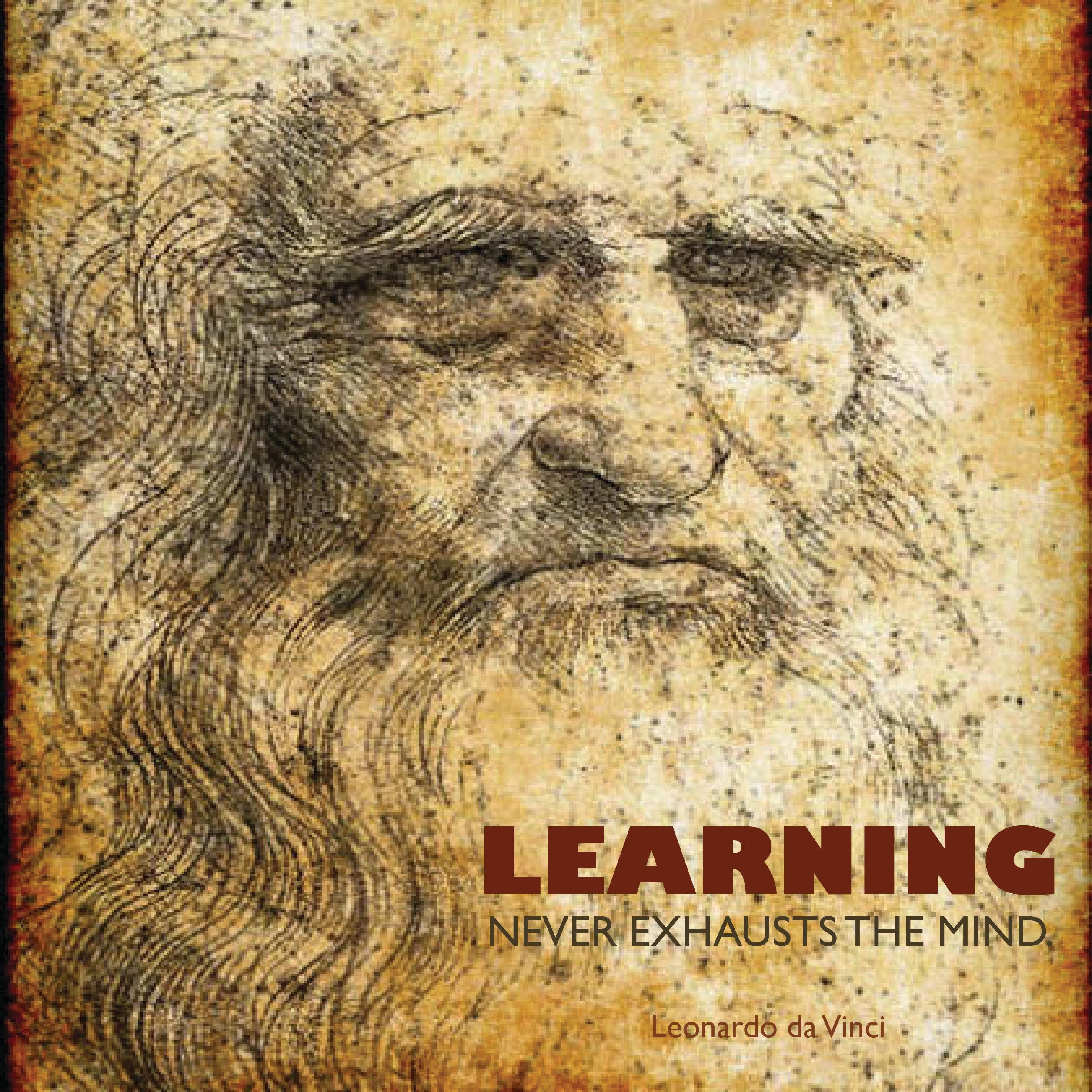 davinci.learning