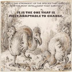darwin.change