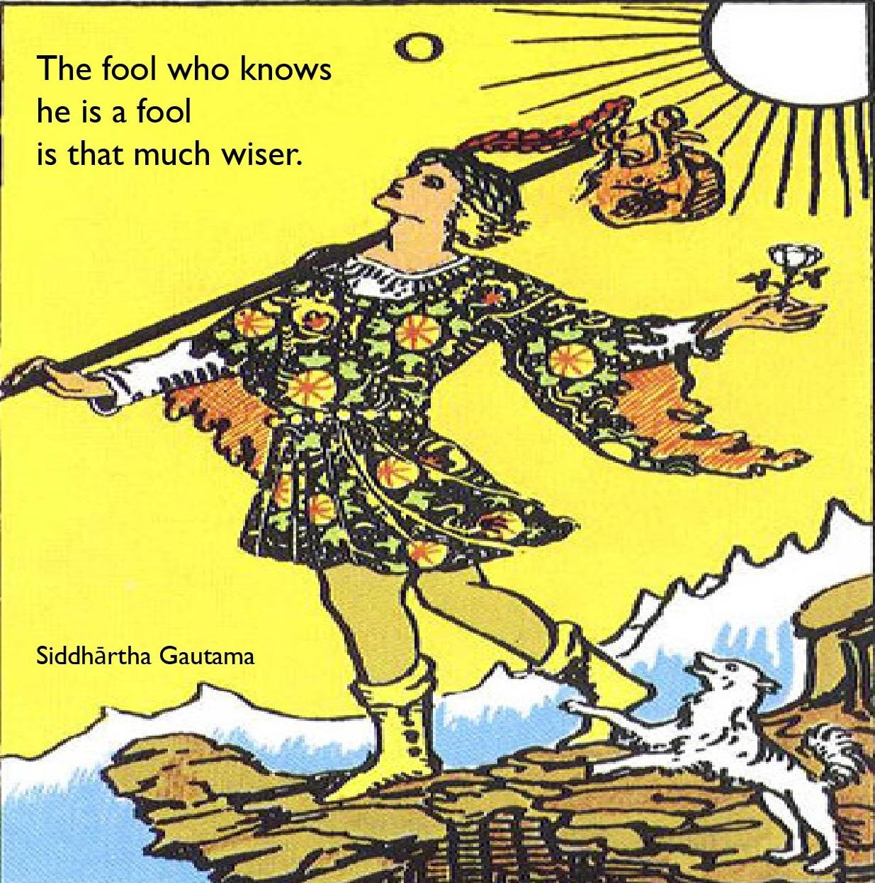 fool.wiser