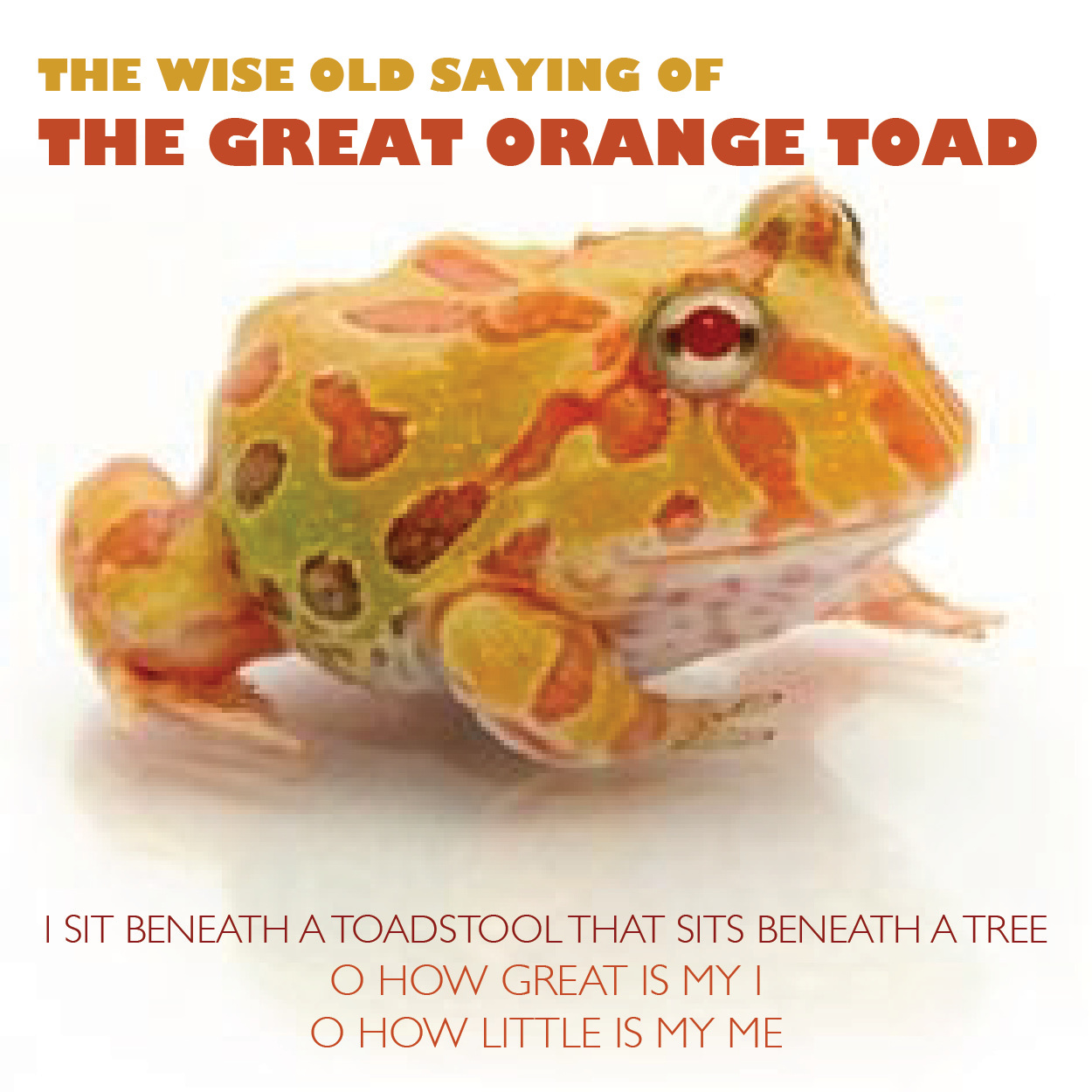 GREAT.orange.toad