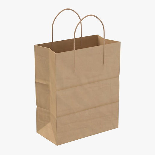 paper_shopping_bag_with_paper_handle_lar