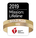 2019 mission lifeline.png
