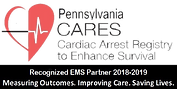 CARES 2018-19 Award Web Badge.png