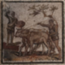 La trilla en la Roma antigua