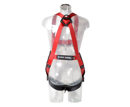Checkmate PBH02 Two Point Harness
