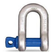 Alloy Dee Shackle Blue Screw Pin