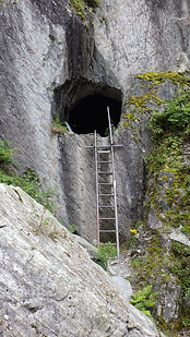 ladder to the lake