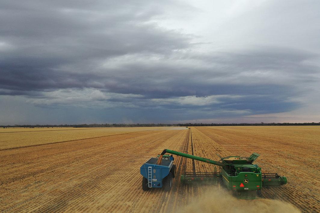Boolarwell Harvest 11.11.2020.jpg