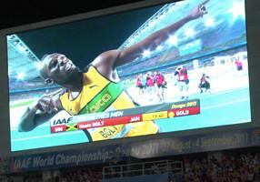 Visiting IAAF World Champinships, Daegu