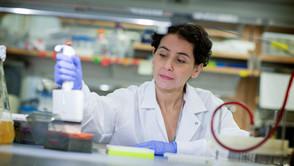 Researchers identify 14 weight gain causing genes