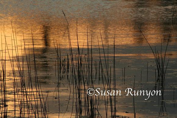 12 - Sunrise on Raquette Lake