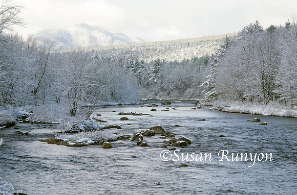 Winter Along the Ausable