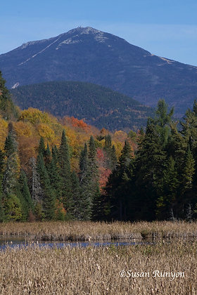 14 - Whiteface Mountain from Cherry Patch Pond-2
