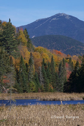 14 - Whiteface Mountain from Cherry Patch Pond-1