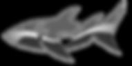 atm-logo-BW.png
