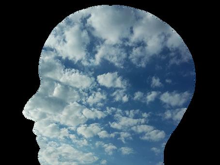 Mental Health Focus: Assess
