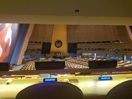 Successful Week at United Nations' HQ in New York City
