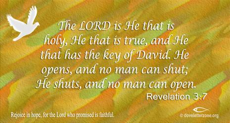 Loss or Failure | Seek the Lord