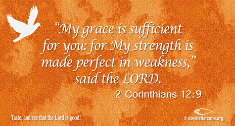 Weakness or Failure | Seek the God of All Grace