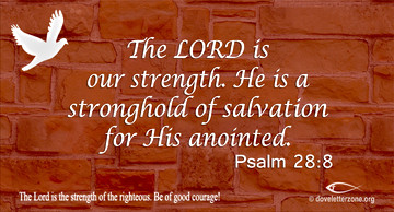 Weakness | Find Strength in the Lord