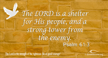 Fear | Take Refuge in the Lord