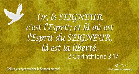 Liberté en Jésus-Christ