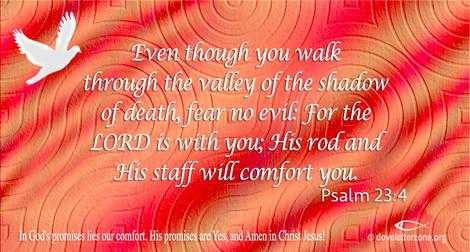 Fear, Hardship, Sadness