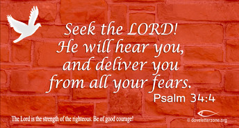Fear | Seek the Lord