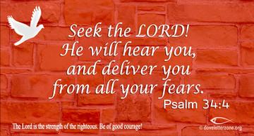 Fear | Seek the Lord