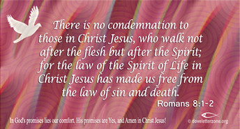 Condemnation | Walk in Freedom